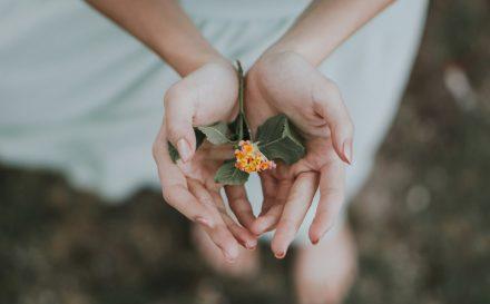 Pielęgnacja dłoni w domu – sprawdź, jak zadbać o nie w domowym zaciszu!